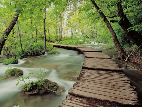 Plitvice-National-Park-Croatiab1bfc6243b9b2941.jpg