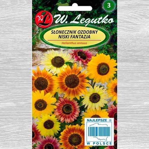 floarea-soarelui-decorativa-fantasia-amestec1-21c8d92f23c88fd8b.jpg